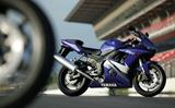 R6: New race-bred spec (en inglés)