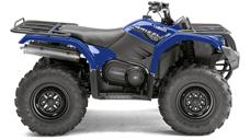 Grizzly 450 EPS