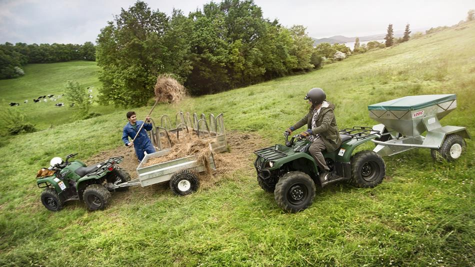 Yamaha Grizzly  Wd