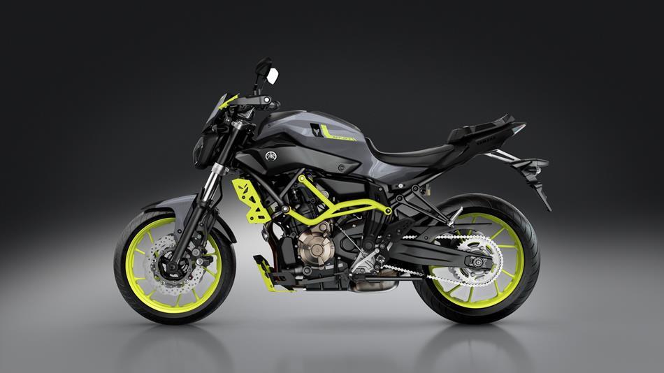 Yamaha Mt Moto Cage